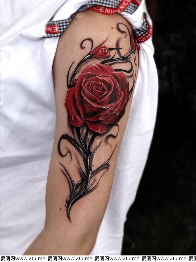 精美个性纹身图片 最近火热的纹身小图案